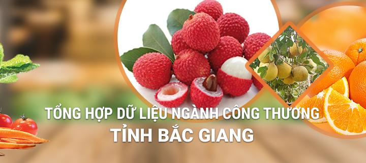 HiNET triển khai thành công dự án CSDL công thương tỉnh Bắc Giang