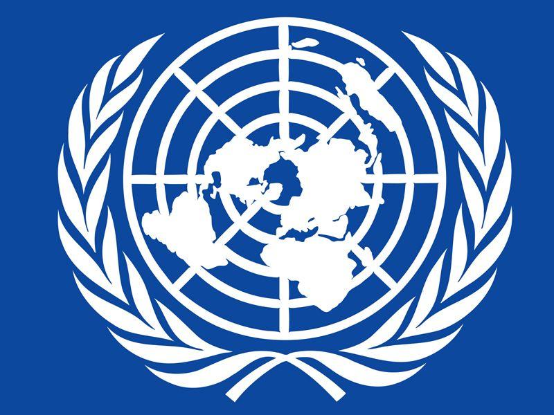 Chương trình Phát triển Liên Hiệp Quốc tại Việt Nam (UNDP)